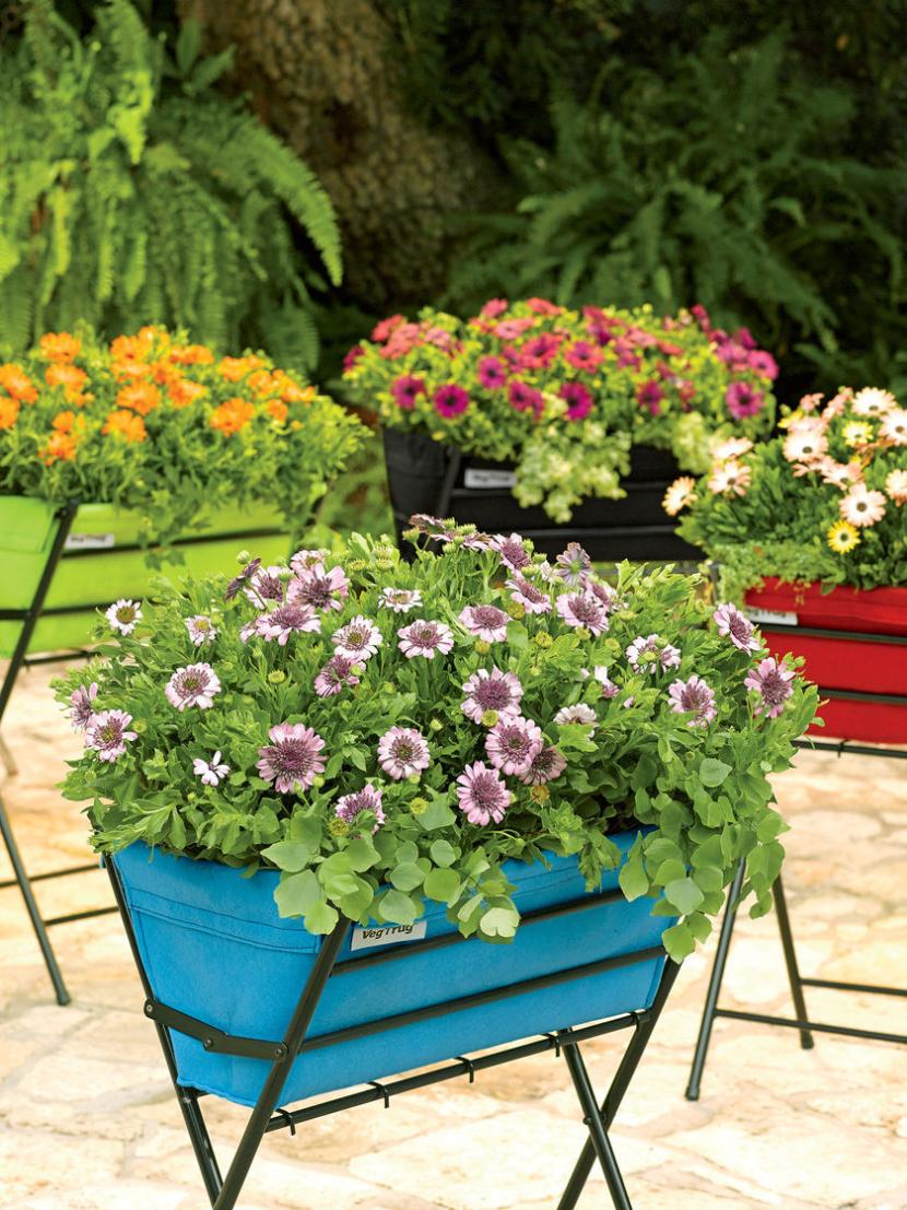 Mejora la apariencia de tu jard n con mesas de cultivo - Drenaje mesa de cultivo ...