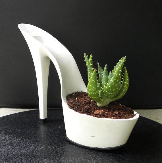 Macetas para plantas en zapatos sexys plantas en zapatos for Tipos de plantas para macetas
